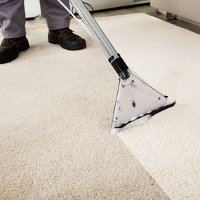 Carpet Cleaners - Cleaning Industry